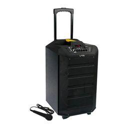 Amplificador Recargable 60W Rms Con Micrófono VTA