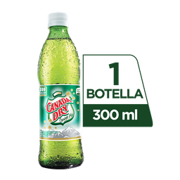 Canada Dry Ginger Ale 300  ml