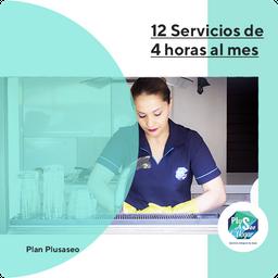 Plan 12 Servicios De 4 Horas Al Mes