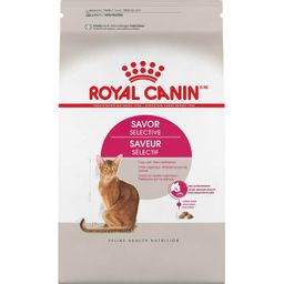 Alimento Seco Royal Canin Feline Savor 1.13 Kg