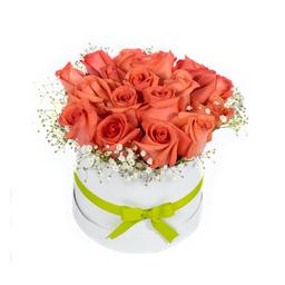 Caja Con Rosas Salmón 18 U