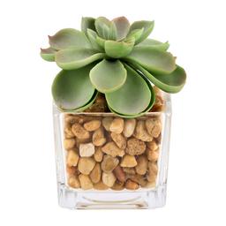 Maceta Cactus Artificial Vidrio M