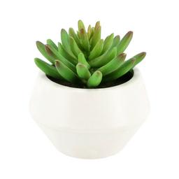 Maceta Cactus Artificial Ceramica M