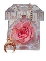 Cofre de rosa preservada rosada con collar de media luna