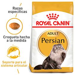 Alimento Para Gato Royal Canin Persian Adulto 2 Kg