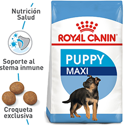 Alimento Para Perro Royal Canin Maxi Pup Junior 15 Kg