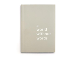 Libro A World Without Words - Jasper Morrison