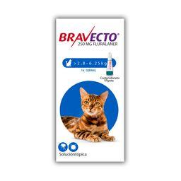 Bravecto Spot On Cat 250 Mg (2,8 - 6,2 Kg)