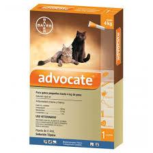 Advocate Antipulgas y Antiparasitario  Gatos Hasta 4 Kg