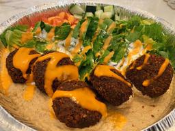 Habibi Veggie Falafel