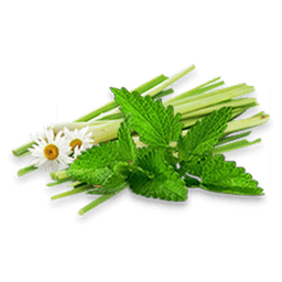 Hierbas Aromaticas Mixtas 1 Kg