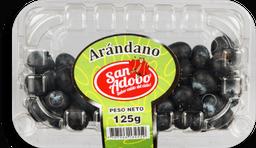 San Adobo Arándanos