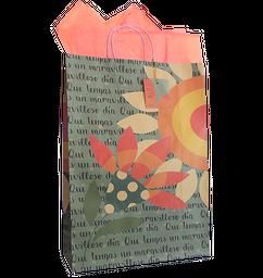 Bolsas regalo ecológica WS