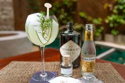 Gin & Tonic Hendricks
