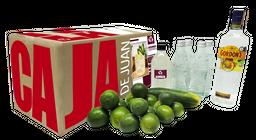 Caja de Cocteles Gordons - Cucumber Lemonade 15 Cocteles 1 U