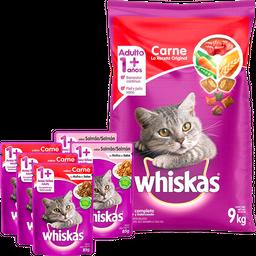 Rappicombo Combo Gato + Gift Pack