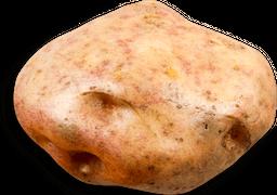Papa pastusa