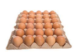 Huevos Rojos AA