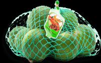 Limón Tahiti  Taeq