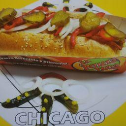 Perro Chicago