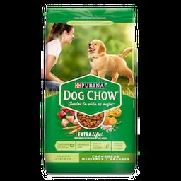 Alimento Seco Dog Chow Salud   Cachorros  Medianos Y Grandes 1Kg
