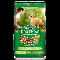 Alimento Seco Dog Chow Salud   Cachorros  Medianos Y Grandes 2Kg