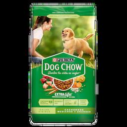 Alimento Seco Dog Chow Salud   Cachorros  Medianos Y Grandes 4Kg