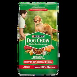 Alimento Seco Dog Chow Salud   Adultos  Medianos Y Grandes 2Kg