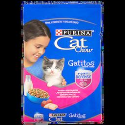 Alimento Seco Cat Chow Gatitos 500Gr
