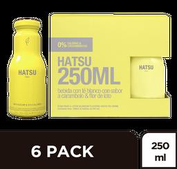Te Té Hatsu Amarillo SixPack x 250 ml