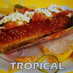 Perro Tropical