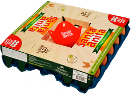 Huevo Rojos AAA Santa Anita