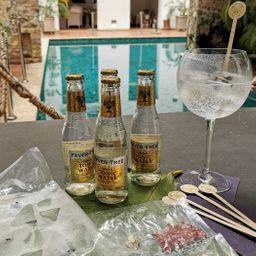 Gin And Tonic Alma en Casa