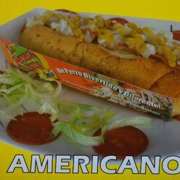 Perro Pop Americano