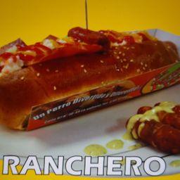 Perro Ranchero