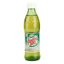 Canada Dry 300 ml
