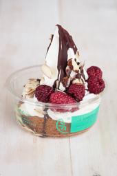 Poket yogurt helado recomendado