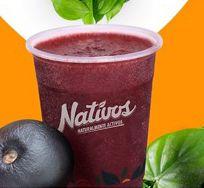 Logo Nativos - Saludable