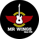 Master Wings background