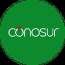 Conosur - Sushi background