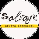 Salvaje Gelato background