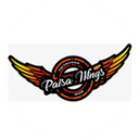Paisa Wings background