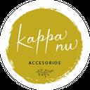 Kappa Nu background