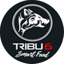 Tribu 6 background