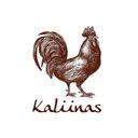 Kaliinas background