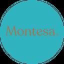 Montesa background