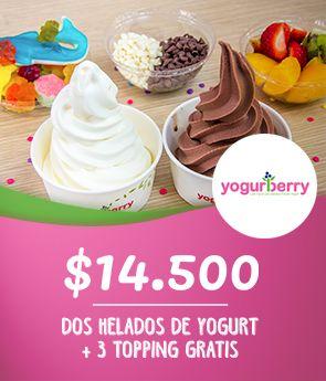 Dos Helados de yogurt + 3 topping gratis
